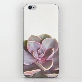 Purple Succulent iPhone Skin