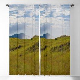 Beach Grass Blackout Curtain