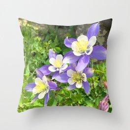 Watercolor Flower, Columbine 05, Fall River Road, RMNP, Colorado Throw Pillow