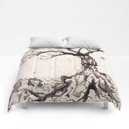 Solum II /// Tree Studies Comforters