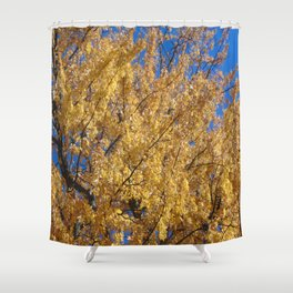 Golden Leaves Autumn Trees Shower Curtain