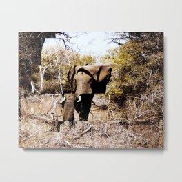 Staggered Elephant Metal Print