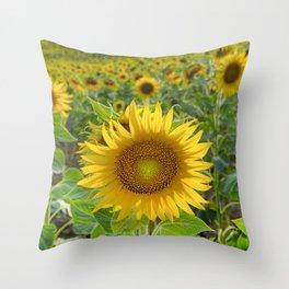 Sunflower. Summer dreams Throw Pillow