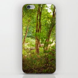 Surreal woodland iPhone Skin