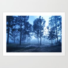 Black Forest Art Print