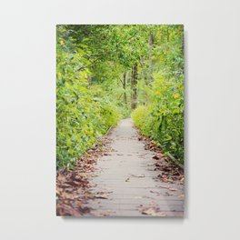 Forest Path Metal Print