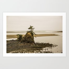 Islas en la Costa de Oregon Art Print