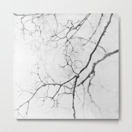 impression of a tree in black and white Metal Print