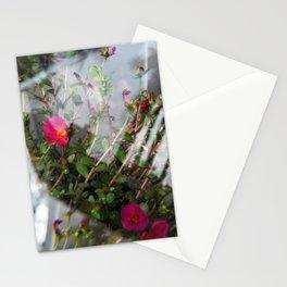 Summer Lovin' II Stationery Cards