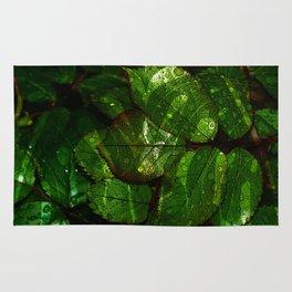leaves V4WL Rug
