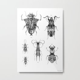 Entomologic Bones Metal Print