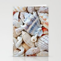 shells Stationery Cards featuring Shells by Taylor Payne