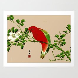 Vintage Japanese Painting of a Parrot, Red & Green Art Print
