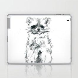 Wild Racoon Laptop & iPad Skin