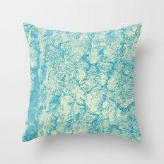 2636 Throw Pillow