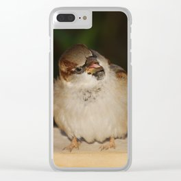 Hungry House Sparrow Clear iPhone Case
