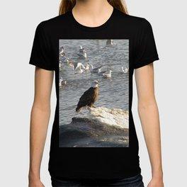 Eagle on Ice T-shirt