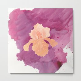 Peach Iris Watercolor Print Metal Print