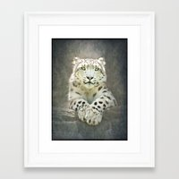 snow leopard Framed Art Prints featuring Snow Leopard by Pauline Fowler ( Polly470 )
