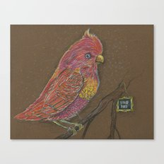 Vivid Bird Canvas Print