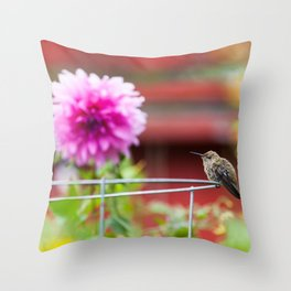 Meal Planning For Hummingbirds Throw Pillow