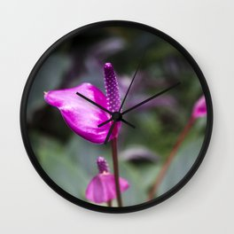 pink flowers • nature photography Wall Clock