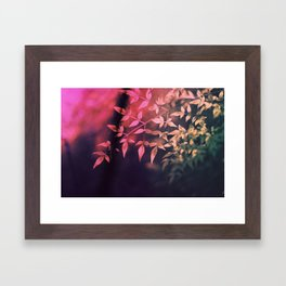 Cross processing Framed Art Print