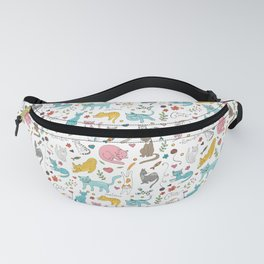 068 Fanny Pack