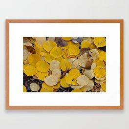 Aspen Autumn Leaves Framed Art Print