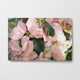Pretty in Pink  |  The Plant Life Metal Print