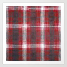 Texture #19 Plaid fabric. Art Print