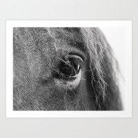 Horse eye Art Print
