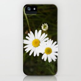 The Daisy In The Middle iPhone Case