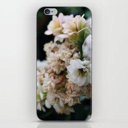 Beneath Dead Leaves iPhone Skin