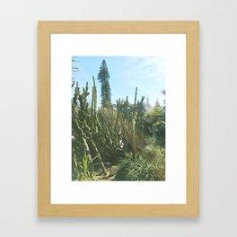 jardim da estrela II Framed Art Print