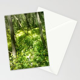 Last Looks Stationery Cards