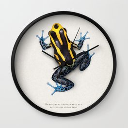 Reticulated poison frog Wall Clock