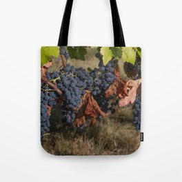 Vineyard Grape Clusters Tote Bag