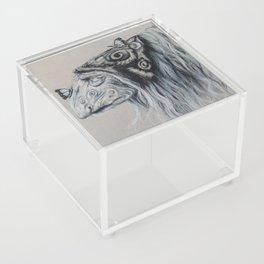 Magic Acrylic Box