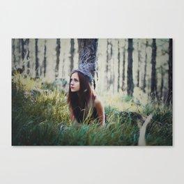 Fairytail Canvas Print