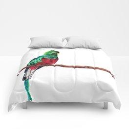 Pharomachrus mocinno Comforters
