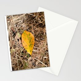 Yellow leaf on the ground Stationery Cards