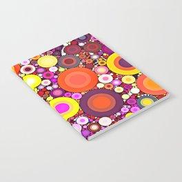 Scatter Sunshine Notebook