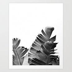 TROPICAL VOYAGE II Art Print