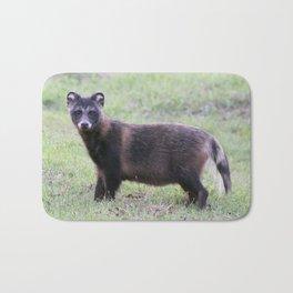 Raccoon dog Bath Mat