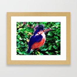 a blue bird Framed Art Print