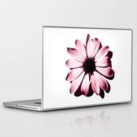 burgundy Laptop & iPad Skins featuring DAISY BURGUNDY by Jayco Tokay