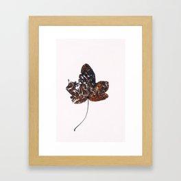 Holophrase Framed Art Print