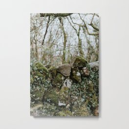 When Abounding Hedges Ring Metal Print