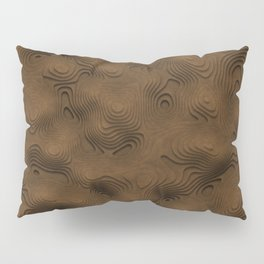 Desert Topographic Landscape Pillow Sham